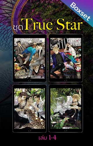 หน้าปก-boxset-ชุด-true-star-เล่ม-1-4-ookbee