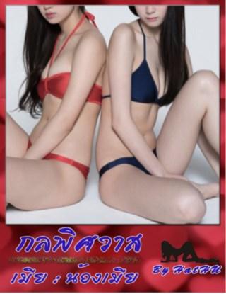 กลพิศวาส-เมียน้องเมีย-nc18-หน้าปก-ookbee