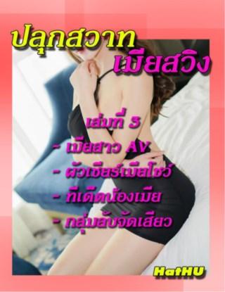 หน้าปก-ปลุกสวาท-เมียสวืง-เล่มที่-3-ookbee