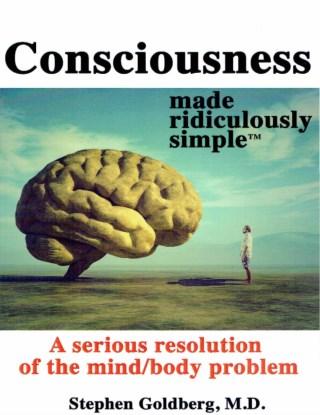 หน้าปก-consciousness-a-serious-resolution-of-the-mindbody-problem-made-ridiculously-simple-1ed-ookbee