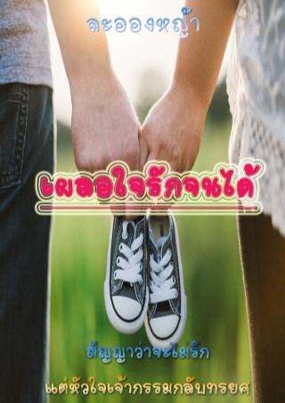 หน้าปก-เผลอใจรักจนได้-ookbee