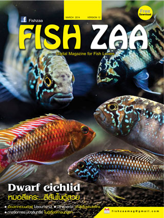 หน้าปก-fishzaa-march-2014-ookbee
