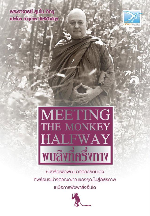พบลิงที่ครึ่งทาง-epub-หน้าปก-ookbee