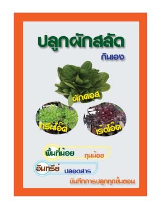 หน้าปก-ปลูกผักสลัดกินเอง-ookbee