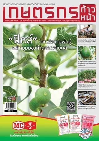 เกษตรก้าวหน้า-november-2019-หน้าปก-ookbee