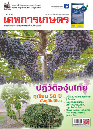 หน้าปก-kehakaset-may-2019-ookbee