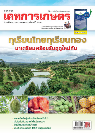 หน้าปก-kehakaset-october-2019-ookbee