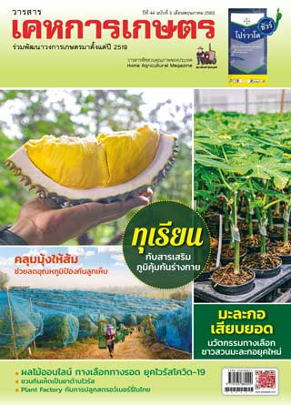 หน้าปก-kehakaset-may-2020-ookbee