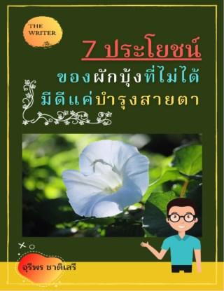 หน้าปก-7-ประโยชน์ของผักบุ้ง-ที่ไม่ได้มีดีแค่บำรุงสายตา-ookbee