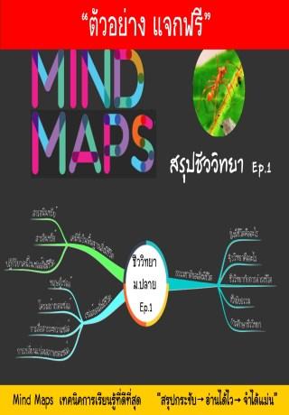 หน้าปก-แจกฟรี-ตัวอย่าง-mind-maps-สรุปชีววิทยา-ep1-ookbee