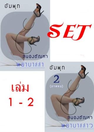 หน้าปก-ตัวอย่าง-set-สนองตัณหาพยาบาลสาว-ชุด-2-เล่ม-ookbee