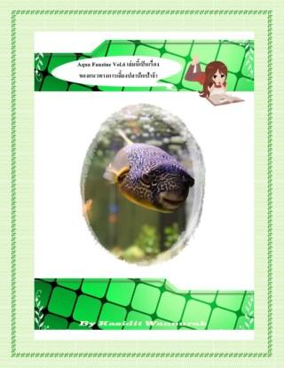 หน้าปก-aqua-fanzine-vol6-อะควาแฟนซีน-เล่มที่-6-ookbee