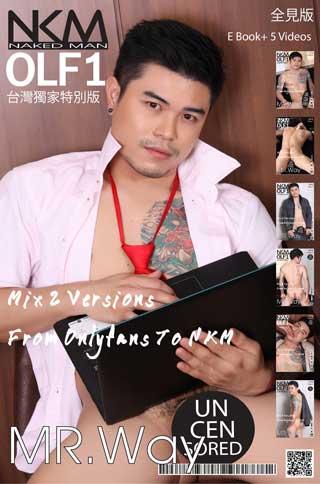 หน้าปก-nkm-olf-nkm-olf1-mrway-e-book-5-videos-ookbee