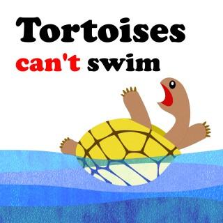 หน้าปก-tortoise-cant-swim-ookbee