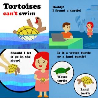 หน้าปก-tortoises-cant-swim-ookbee