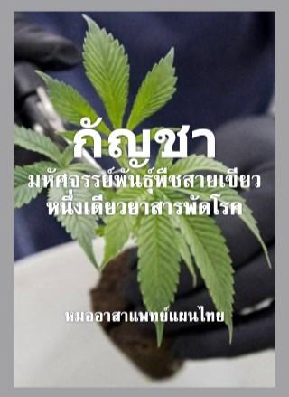 หน้าปก-กัญชา-มหัศจรรย์พันธุ์พืชสายเขียว-หนึ่งเดียวยาสารพัดโรค-ookbee