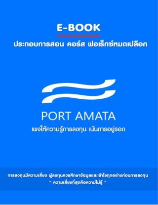 หน้าปก-e-book-forexหมดเปลือก-ฟรีวีดิโอการสอนแบบเจาะลึก-ookbee