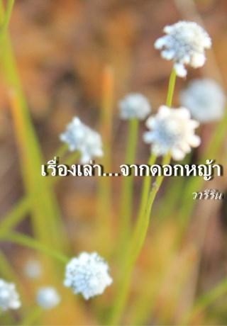 หน้าปก-เรื่องเล่าจากดอกหญ้า-ookbee
