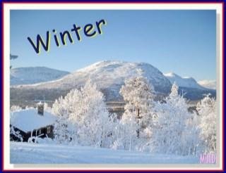 winter-ฤดูหนาว-หน้าปก-ookbee