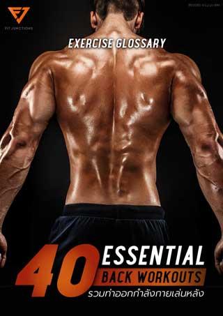 essential-workout-40-ท่าเล่นหลัง-หน้าปก-ookbee