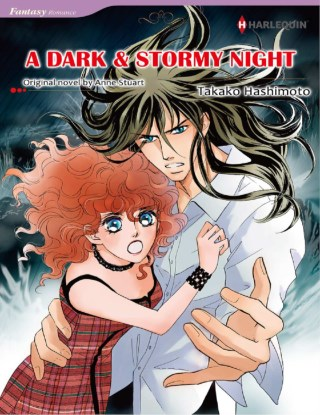 หน้าปก-a-dark-stormy-night-ookbee