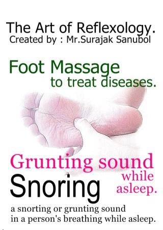 หน้าปก-snoring-ookbee