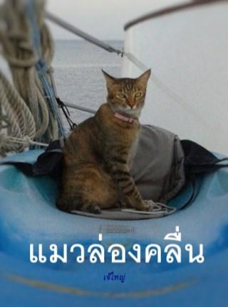 หน้าปก-แมวล่องคลื่น-ookbee