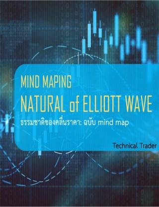 หน้าปก-ธรรมชาติคลื่นราคา-elliott-wave-ookbee