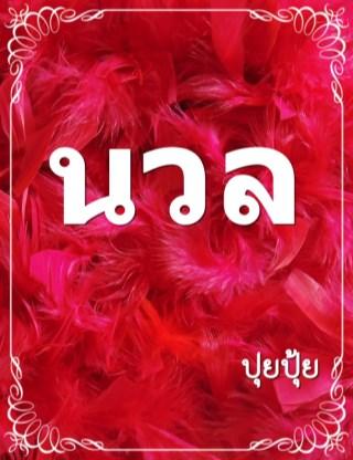 หน้าปก-นวล-ookbee
